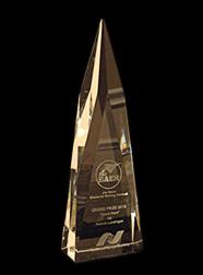 Baen_award3